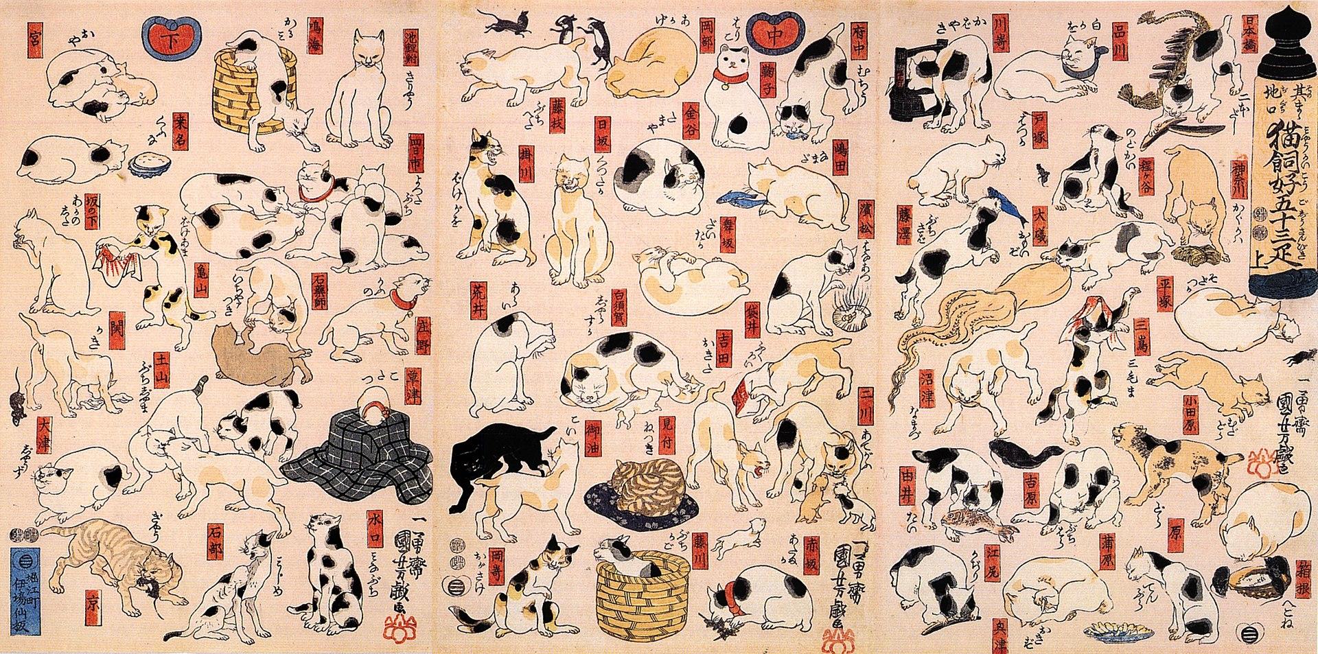 日本浮世繪 x 貓